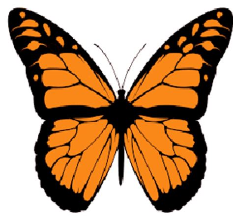 Butterfly effect short essay